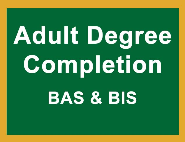 Adult Degree Completion